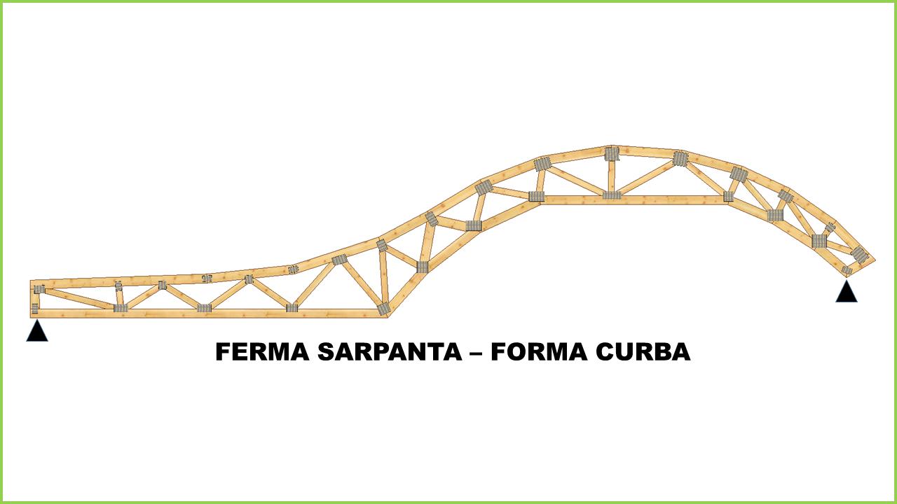 ferma_sarpanta_forma_curba